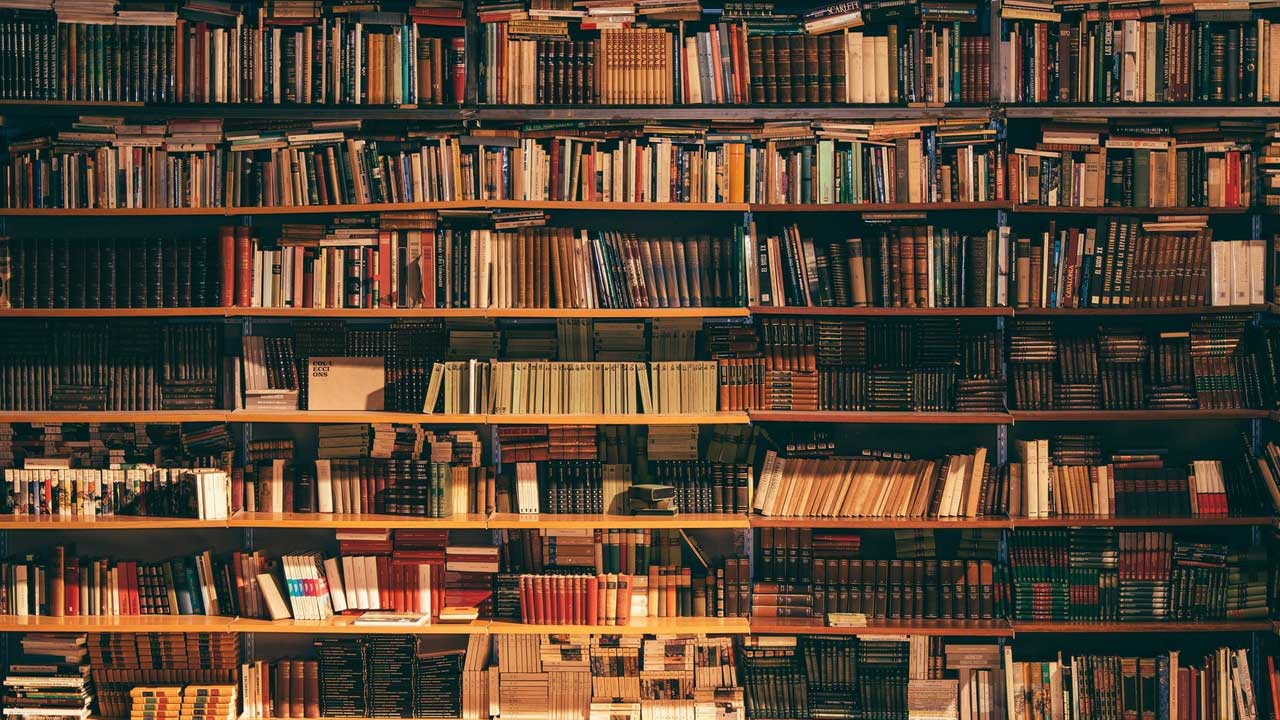 Geology is an exciting study, and if you're curious about the best geology books to brush up your knowledge on this subject, here is our insight.